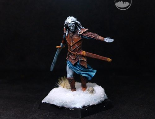Dark Male Elven Warrior with Long Sword