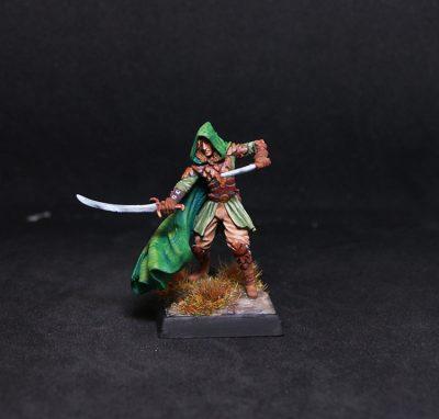 Male Elven Ranger - Dual Wield