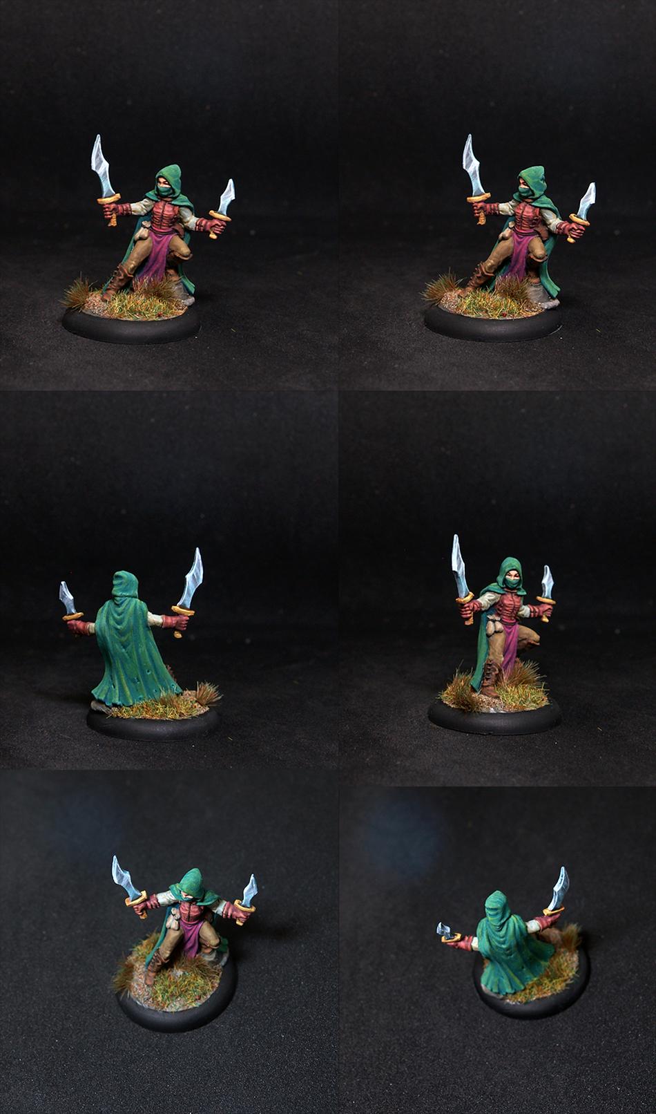 Reaper miniatures Serena, Dreadmere Rogue