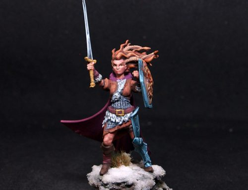 Female Shieldmaiden Warrior