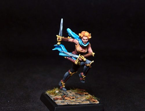 Velocia- Female Fighter-Rogue